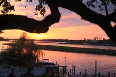 Sunset over the bayou. Peaceful Places, Beautiful Places, Ocean Springs Mississippi, Disney World News, Beach Town, Southern Living, Horn, Sunsets, Lighthouse