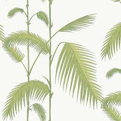 Palm by Cole & Son - Dove Grey - Wallpaper : Wallpaper Direct Mint Wallpaper, Palm Leaf Wallpaper, Wallpaper Roll, Pattern Wallpaper, Wallpaper Backgrounds, Flower Wallpaper, Wallpaper Online, Wallpaper Samples, Cole Son