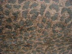 cocoa olive leopard print