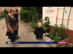 Les incroyables comestibles sur France 3 / partagé gracieusement par delta dore