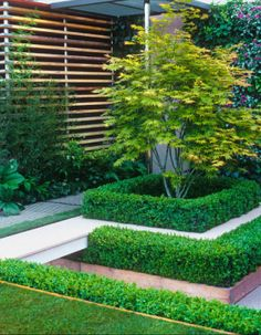 To add volume to a small space, introduce levels with planting or landscaping.