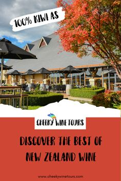 Discover The Best of New Zealand Wine with Cheeky Wine Tours. Come with us and See more, Drink more and Spend less. New Zealand Wine, Fun Days Out, Fine Wine, Wine Tasting, Tours, Good Things, Mansions, Drinks, House Styles