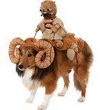 Das Star Wars Dewback for Pets by Rubies Costume. Hunde Kostüme vom Filmklassiker. Mehr dazu auf: www.ztyle.de