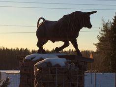 Härkä-patsas