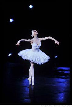 aurelie-dupont: Elisabeth Platel in Swan Lake Photo © Daniel Cande Paris Opera Ballet, Dance Images, Dance Pictures, Ballet Tutu, Ballet Costumes, Dance Costumes, George Balanchine, Kinds Of Dance, Nureyev