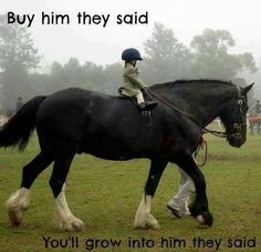 The 8 Lesson Horses Every Kid Grows Up Knowing More