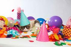 Happy birthday Tard
