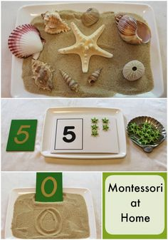 Beach themed Montessori at Home Activities