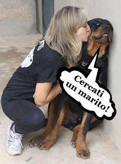 Foto Divertente: Cane che viene baciato dalla padrona