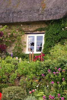 The Swenglish Home