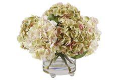 """15"""" Hydrangea in Vase, Cream, Faux on OneKingsLane.com"""