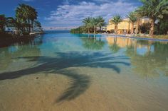 Blavatar How does lying on the beach in balmy weather at the Dead Sea sound like to you? Dead Sea Israel, Jerash, Wadi Rum, Sounds Like, Resort Spa, Hot Springs, Travel Destinations, Places To Visit, Vacation