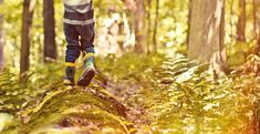 Austin Woodland School Summer camp will be offered in 2015: June 1 – August 14, 2015  (WS is closed for two weeks in August) 9 am – 2 pm, Monday -Friday Open to children ages 3 1/2 to 7 years old Prorated summer tuition is offered in one week increments, M-F only Tuition: $167 per week  Summer camp enrollment for current students & their siblings begins March 2, 2015.  Summer enrollment for new students begins April 6, 2015. Summer camp at Woodland Schoolhouse is laid back and fun, just like…