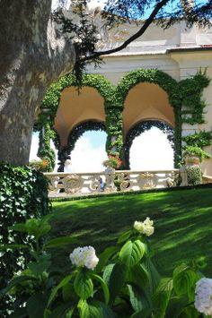 Peaceful garden with hydrangeas.