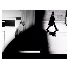 "Matthew Wylie @m_mateos ""But if you tame ...Instagram photo   Websta (Webstagram)"