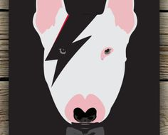 Terrier Bowie Black