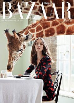 COVER  {at this moment | now trending : giraffes are everywhere} | Flickr  Photo Sharing!