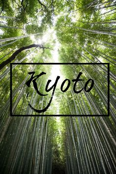Kyoto- a 3 day itinerary