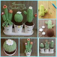 Crochet Cactus Amigurumi- Free Patterns - DIY 4 EVER : Crochet Cactus Amigurumi- Free Patterns Crochet Giraffe Pattern, Crotchet Patterns, Crochet Amigurumi Free Patterns, Crochet Cactus Free Pattern, Crochet Christmas Gifts, Crochet Gifts, Amigurumi For Beginners, Crochet Flowers, Crochet Projects