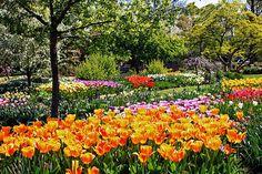 Missouri Botanical Garden, St. Louis, Missouri | Flickr - Photo Sharing! National Historic Landmark