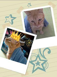 King Milson