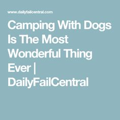 Camping With Dogs Is The Most Wonderful Thing Ever | DailyFailCentral