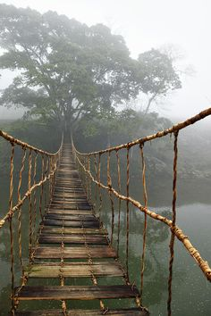 Rope bridge in Sapa, Vietnam. I have this picture in my bedroom!