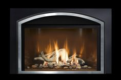 Mendota Hearth gas fireplaces and gas fireplace inserts off many doors and fronts to choose from. Find the fireplace front or door that matches your style. Wood Fireplace Inserts, Fireplace Fronts, Gas Fireplace, Fireplaces, Close Image, Hearth, Doors, Arrow Keys, San Carlos