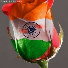 Happy Independence Day to all my friends at India Independence Day India Images, Independence Day Wishes, Independence Day Wallpaper, Raksha Bandhan Cards, Raksha Bandhan Wishes, Indian Flag Wallpaper, Indian Army Wallpapers, Indipendence Day, Happy Raksha Bandhan Images