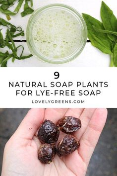 Homemade Beauty Products, Natural Cleaning Products, Making Bar Soap, Health Food Shops, Soap Nuts, Homemade Soap Recipes, Cleaners Homemade, Green Cleaning, Belleza Natural
