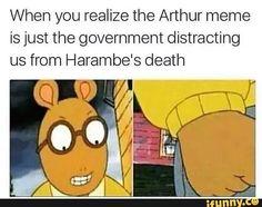 Rip harambe, forever a spicy memeball