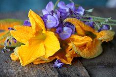 Facciamo le frittelle facili e gustose clicca qui like ---> http://blog.alice.tv/detailsoflife/2014/07/10/frittelle-di-fiori-di-zucca-e-glicine/