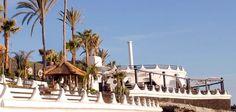 Monkey Beach Club es un lugar emblemático en Tenerife Sur. Su localización, en la playa de Troya, y su decoración, donde predominan muebles de bambú y una vegetación frondosa de palmeras y plantas, lo han convertido en uno de los locales más populares para organizar eventos. Tenerife, Bamboo Furniture, Palm Trees, Restaurants, Teneriffe