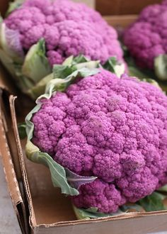 Purple Cauliflower Recipes Food Unexpected Recipes Using Cauliflower MNN Mother . Cauliflower And Potato Soup Recipe . Purple Cauliflower Recipe, Cauliflower Recipes, Cauliflower Pizza, Fruit And Veg, Fruits And Vegetables, Purple Food, Exotic Fruit, All Things Purple, Food Network Recipes