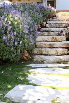 Rockery Garden, Garden Stairs, Rose Wallpaper, Outdoor Living, Outdoor Decor, Yard Landscaping, Yard Ideas, Art Lessons, Landscape Design