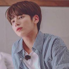 Kai, K Pop, K Idols, Boyfriend Material, Korean Singer, Wattpad, Memes, People, Squirrel