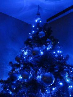 blue christmas tree | Our Blue Christmas Tree…