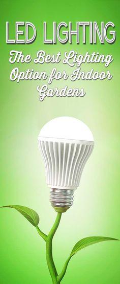 LED Grow Lights: The Best Lighting Option for Indoor Plants & Gardens