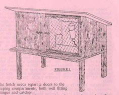 rabbit coop designs | Free Rabbit Hutch Building Plans | House plans with photos