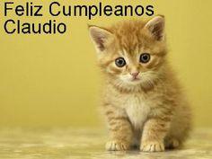 tarjeta-feliz-cumpleanos-Claudio-26-372-small.jpg (360×270)