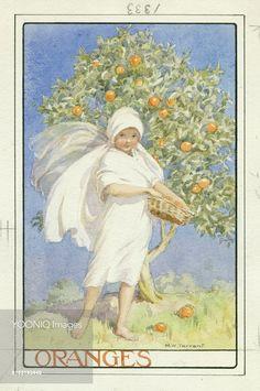 'Oranges' - Margaret Tarrant