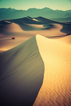 This was my first trip to a proper desert. It's the kind of desert that I imagined after watching Lawrence of Arabia countless times (it's one of my favorite movies). Getting up and down these dunes in the middle of a hot summer day is enough to make you collapse. I think I lost one liter of water per dune. - DEATH VALLEY, CALIFORNIA - photo from #treyratcliff Trey Ratcliff at http://www.StuckInCustoms.com