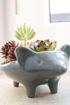 Na decoração de ambientes internos e externos, a beleza dos vasinhos são tão importantes quanto sua funcionalidade. Diversos tamanhos, formas, estilos, cores, texturas e materiais são utilizados para deixar os vasinhos decorativos ainda mais ornamentais.