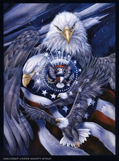 Buy artwork mosaic decoration Diamond cross Stitch Rhinestone Crafts diy Full Diamond Indoor decorations eagle at Wish - Shopping Made Fun American Pride, American History, American Flag, Native American, The Eagles, Bald Eagles, Patriotic Pictures, Eagle Pictures, Eagle Icon