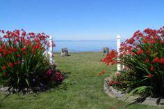 65 Best Sea Cliff Gardens Brand Ideas Board The B B Images Sea