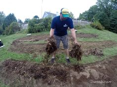 Where to Plant Blueberry Bushes and Preparing the Soil. From @dan330