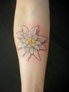 edelweiss flower tattoo - Google Search