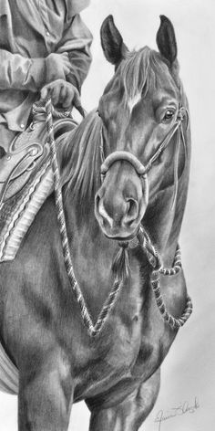 Cow Horse w/Hackamore Carving Image Horse Drawings, Pencil Art Drawings, Animal Drawings, Animal Sketches, Art Sketches, Arte Equina, Kopf Tattoo, Horse Artwork, Cowboy Artwork