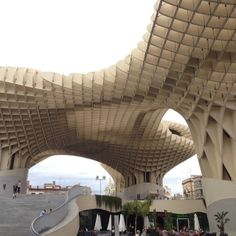 One of the best things I've seen in a long time #metropolparasol #seville #sevilla #trinaturk