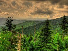 Smoky Mountains summer haze.